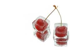 Two frozen cherries Stock Image