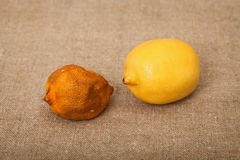 Two fruit against canvas - bad and good lemons Stock Images