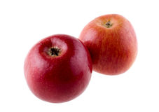 Two fuji apples Royalty Free Stock Photography