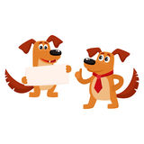 Two funny cute brown dog characters. One holding blank board, another showing thumb up, cartoon vector illustration isolated on white background. Two funny dog Royalty Free Stock Image