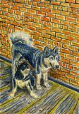 Two funny dogs sitting next to each other. Alaskan Malamutes. Interior of a rural house, brick wall and wooden floor. Bright colors. Watercolor painting Royalty Free Stock Photography