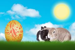 Two funny Easter bunnies Easter egg on green meadow. Sweet little Easter bunnies and an egg in the grass stock photo