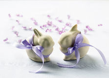 Two funny easter bunny Stock Images