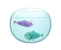 Two Funny Fish Royalty Free Stock Photos