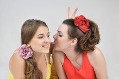 Two funny girls friends. Royalty Free Stock Images