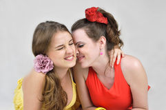 Two funny girls friends. Royalty Free Stock Image