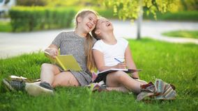 Two funny girls are playing with books. They are smiling and having a lot of fun. The Weather is sunny. HD, girls, fun, grass, cheerful stock video footage