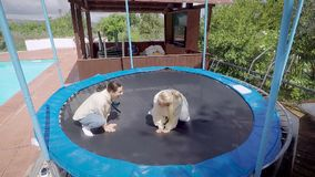 Two funny happy women are jumping on trampoline jokingly, sitting like frogs, smiling and laughing in daytime. Humor and comedy shot stock footage