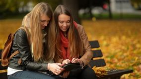 Two Funny Happy Young Girls Friends Sitting on the Bench and Using Tablet. Women Laughing and Playing on Pad Computer in. The Autumn Park on Sunny Day, Outdoor stock video footage