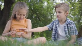 Two funny kids sitting on the grass in the park playing. The boy takes ladybug from girl`s hand. A couple of happy stock footage