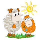 Two funny lambs Royalty Free Stock Photography