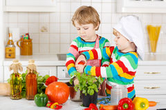 Two funny little boys cooking italian soup and meal with fresh v Royalty Free Stock Photography