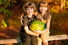 Two funny little sisters eating watermelon outdoors on warm and sunny summer day. Healthy food for kids. Two funny little sisters eating watermelon outdoors on stock photo