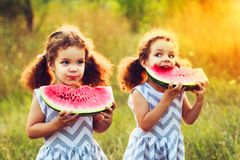 Two funny little sisters eating watermelon outdoors on warm and sunny summer day. Healthy organic food for little kids. Twins girl. Two funny little sisters royalty free stock images