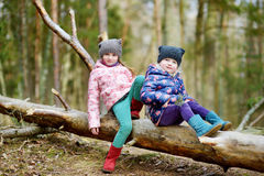Two funny little sisters sitting on a log during forest hike Royalty Free Stock Photo