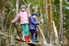 Two funny little sisters sitting on a log during forest hike Stock Photos