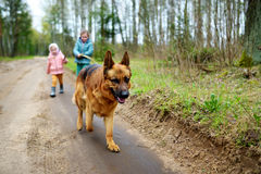 Two funny little sisters walking their dog on a forest hike Royalty Free Stock Images