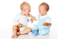 Two funny lovely baby boys sitting together and eating cookies on white background. Two cute joyful children sitting together on white background isolated Stock Photo