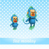 Two funny monkeys from the depths of the ocean Royalty Free Stock Photo