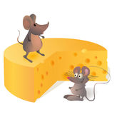 Two funny mouses near the big cheese. Two mouses near the big cheese Stock Photos