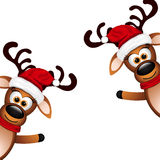 Two funny reindeer on a white background Royalty Free Stock Image