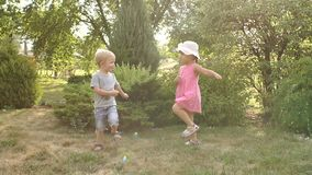 Two little children playing in the Park at sunset. Two funny small kids in the Park, they are playing and having fun. Portrait of two cheerful emotional stock video
