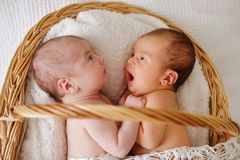 Two funny twins royalty free stock image