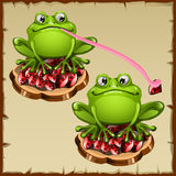 Two Funny vector frog sits on precious stones Royalty Free Stock Photography