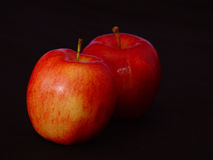 Two Gala Apples. Two red Gala apples photographed on black background, colored flash Royalty Free Stock Photos