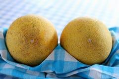 Two galia melon on white-blue checkered kitchen towel Royalty Free Stock Image