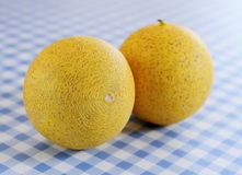 Two Galia melon on the white-blue checkered table Royalty Free Stock Photography