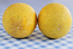 Two Galia melon on white-blue checkered table Stock Images