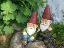 Two funny garden gnomes with red hats. Two garden gnomes with red hats sit on a stone royalty free stock photo