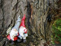 Two Christmas garden gnomes in the forest, in front of an old tree trunk. Two Garden gnomes with a small christmas tree in front of an old tree trunk stock photo