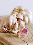 Two garlic bulbs and clove Stock Images