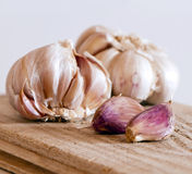 Two garlic bulbs and cloves Stock Photography
