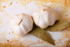 Two garlic heads royalty free stock image