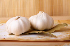 Two garlic heads Royalty Free Stock Photography