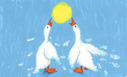 Two geese argue Royalty Free Stock Images