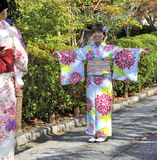 Two geishas Royalty Free Stock Photography