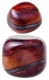 Two gems of Jaspillite gemstone isolated Stock Image