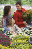 Two generation family shopping for flowers in garden centre, man holding pot plant, smiling Royalty Free Stock Images