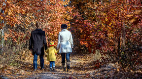 Two Generation Family Walking in Autumnal Forest Rear View. Two Generation Family Walking in Autumnal Forest Alley Father Mother Holding Hands of Little Baby Royalty Free Stock Photography