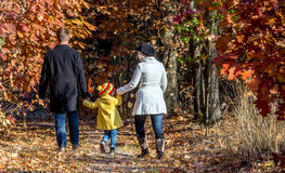 Two Generation Family Walking in Autumnal Forest Rear View. Two Generation Family Walking in Colorful Autumnal Forest Alley Father Mother Holding Hands of Little Stock Image