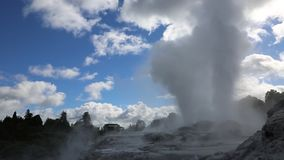 Two geysers. Te Puia geothermal valley - Rotorua, New Zealand stock footage