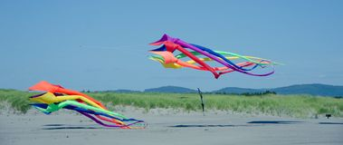 Two giant kites landing at Long Beach, WA Stock Photos