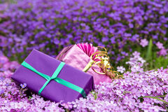 Two gifts in front of a sea of purple blooms Royalty Free Stock Photos