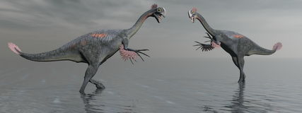 Two gigantoraptor dinosaur - 3d render Royalty Free Stock Images