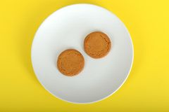 Two Ginger Nut Biscuits Stock Photos