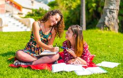 Studying in the park with friends royalty free stock image